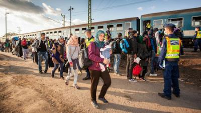 Сотни мигрантов прорвали заг…