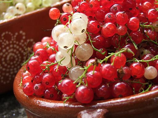 Начинаем обрезку ягодников
