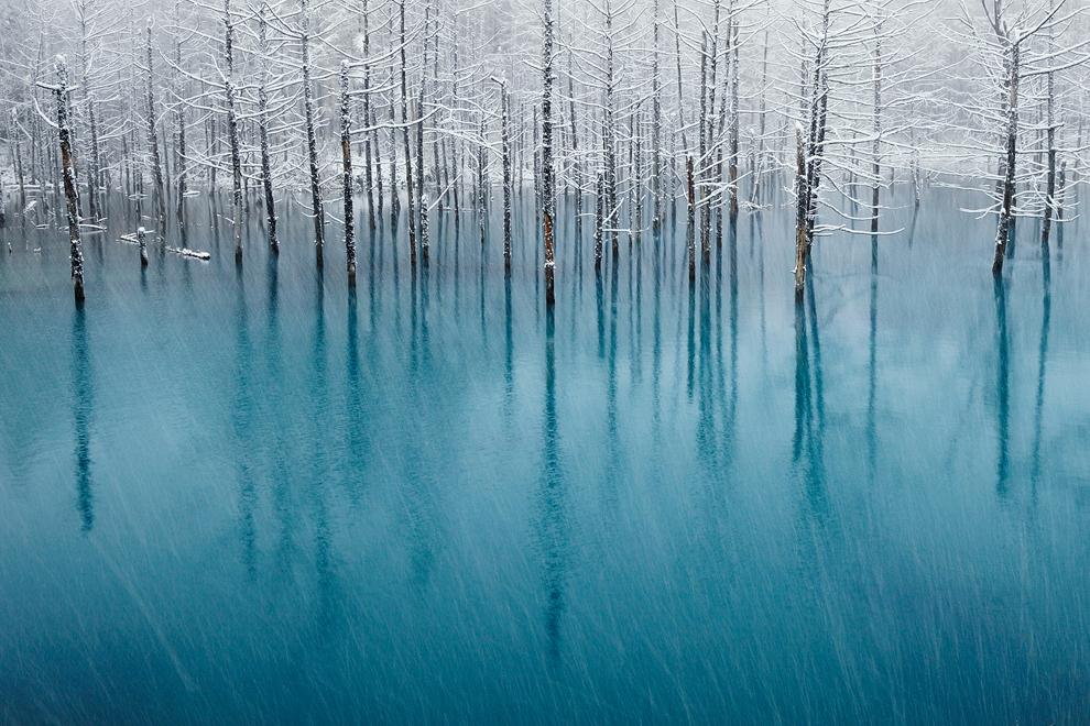 523 Победители фотоконкурса National Geographic 2011