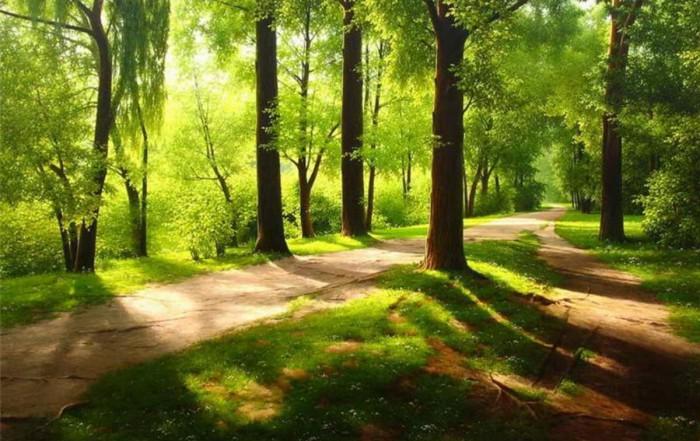 Спокойные и величественные пейзажи Александра Игнатьева
