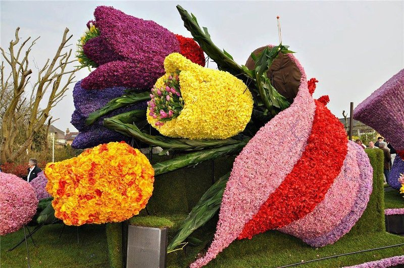 Необычные цветники