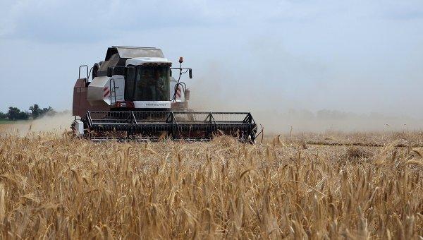 Уборка зерновых в Крыму. Архивное фото
