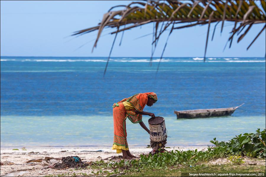 Как загадить райские пляжи