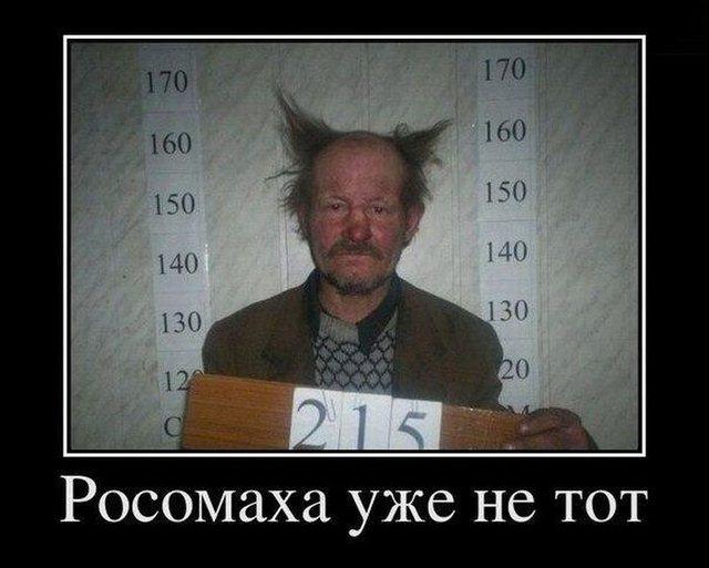http://mtdata.ru/u23/photo42D3/20279972286-0/original.jpg