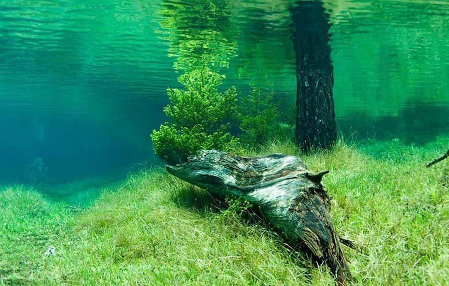 iQh57IH Призрачный парк Зеленого озера