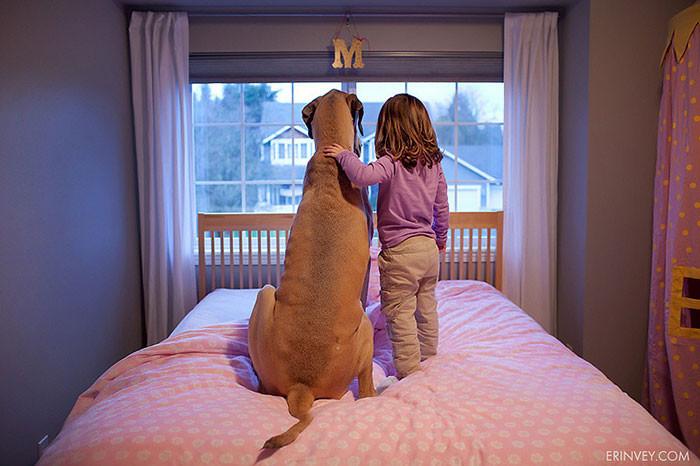Такие девочки  дружба, ребенок, собака
