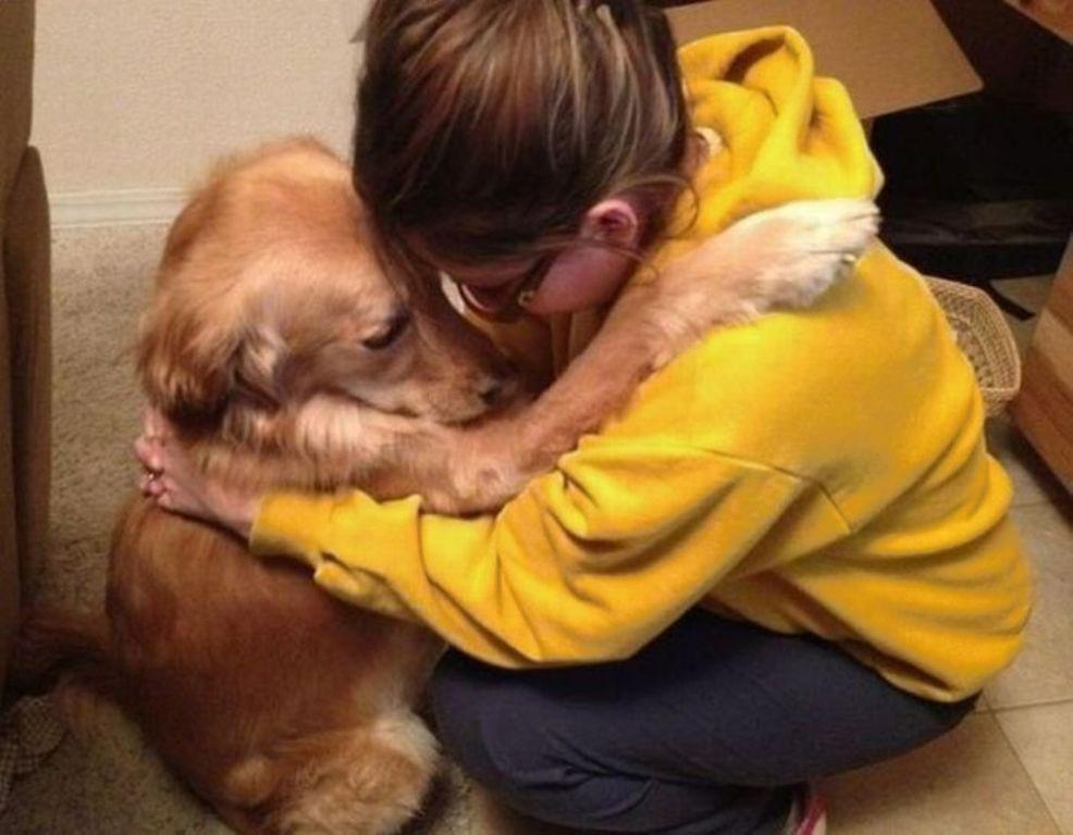 Испуганная собака была в ужасе от прикосновения человека, но обрела дом и полюбила людей