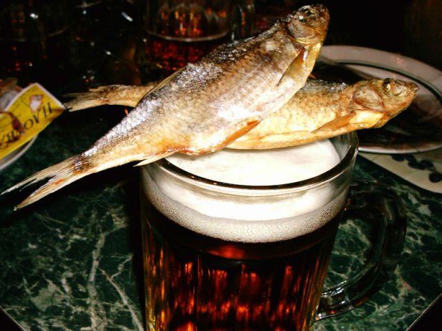 Как приготовить вяленую воблу вобла, рыба