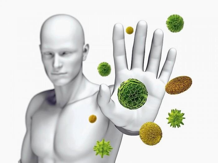 Кратковременное голодание перезапускает иммунную систему и восстанавливает организм