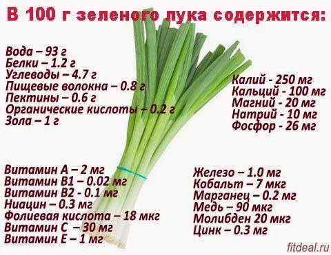 Ценный зеленый лук