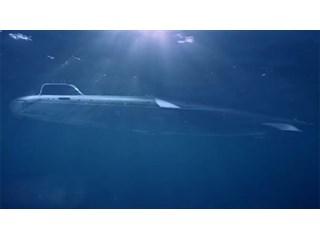 «Звериная» дивизия: подводники поделились секретами противостояния с НАТО