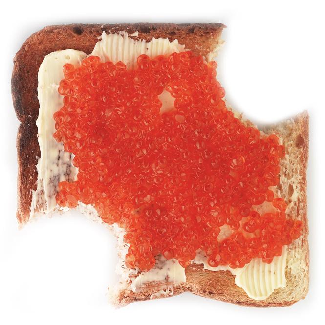 Тостер на прокачку: 16 самых вкусных мужских тостов