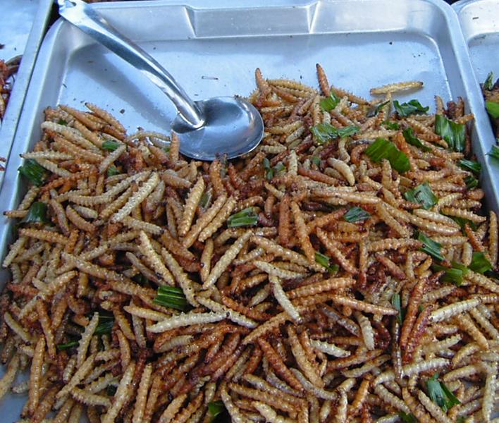 3. Бамбуковые черви. блюдо, мир, экзотика