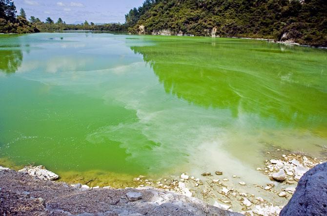 5 озер удивительных цветов