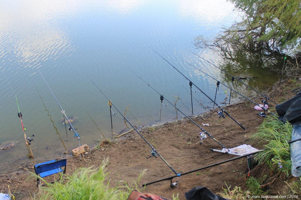 платная рыбалка в херсонской области