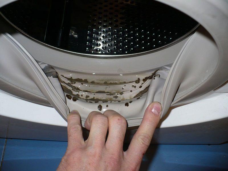 Как убрать неприятный запах, налет и плесень из стиральной машинки
