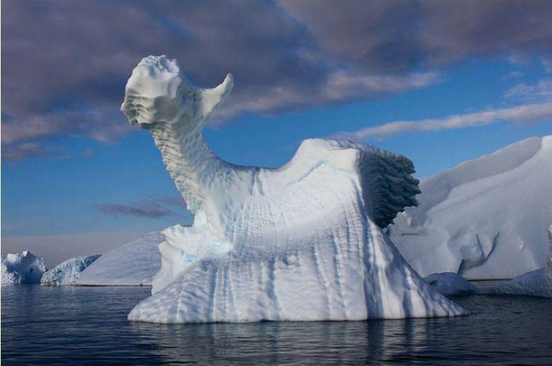 Что это за загадка природы среди бескрайних льдов?