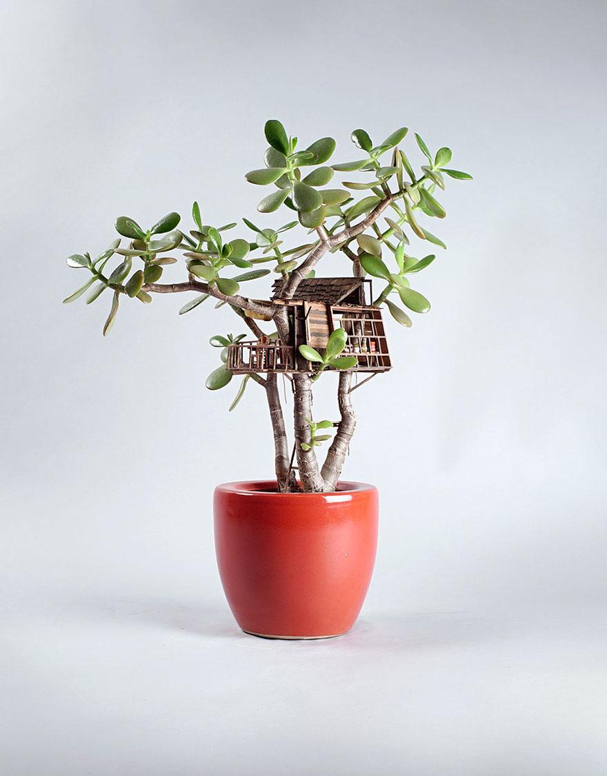Домик на денежном дереве для…