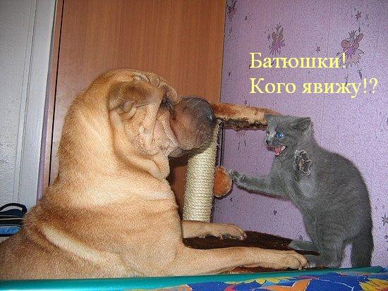 Улыбаемся вместе!
