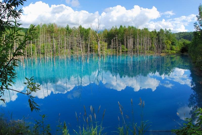 Голубой пруд Биэй летом