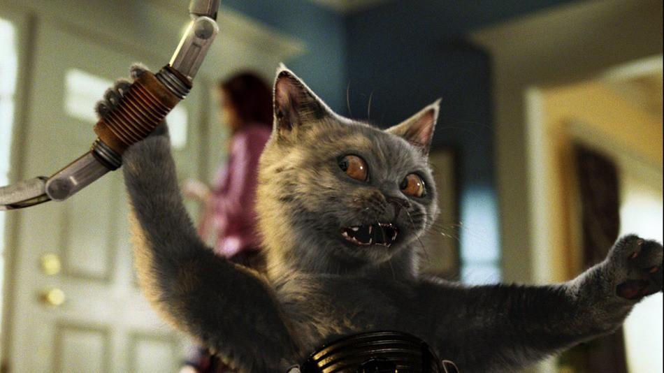 15 доказательств, что ваш кот является агентом ГРУ ГРУ, кот, шпион
