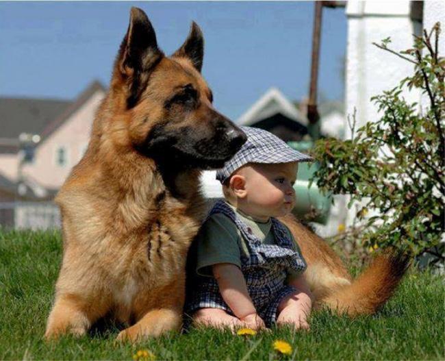 25 доказательств, что детям нужны домашние животные.