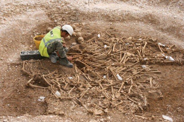Раскопки и исследование костей интересно, история, мумии, наука, скелеты