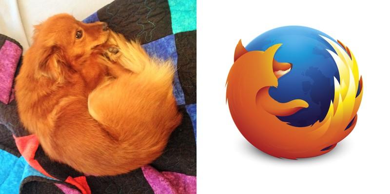 2. Собака и Firefox вещи, люди, похожие лица, схожесть
