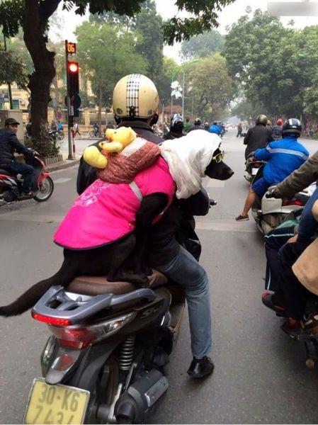 Такое возможно только в Азии азия, люди, маразм