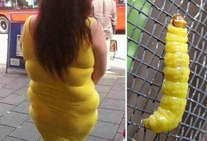 38. Девушка в желтом платье и гусеница вещи, люди, похожие лица, схожесть