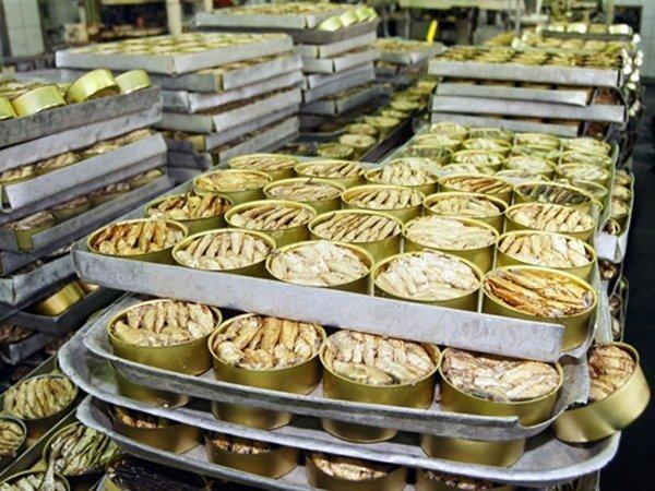 Производство шпрот в Латвии …