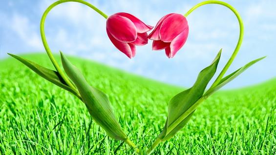 8 Марта! С праздником весны всех женщин