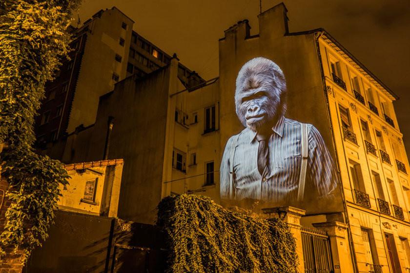 Дикий и стильный Париж: животные в костюмах стали главным украшением столицы