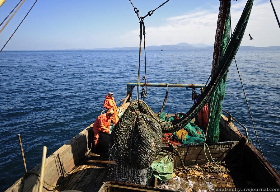 малые рыболовные суда прибрежного лова