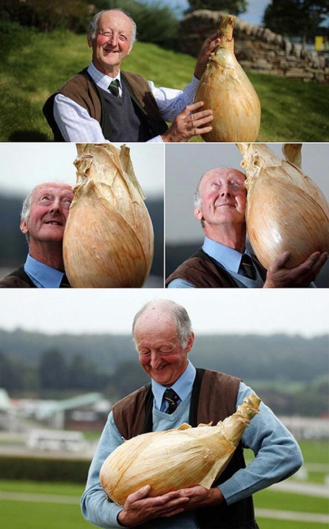Фотографии, вызывающие улыбку
