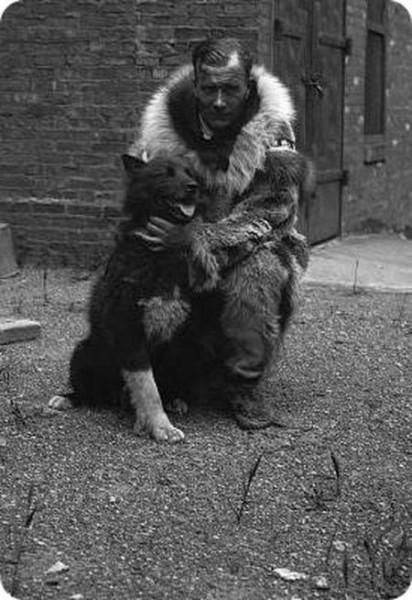Легендарный пёс Балто, спасший город от дифтерии аляска, балто, герой, дифтерия, истории из жизни, пёс