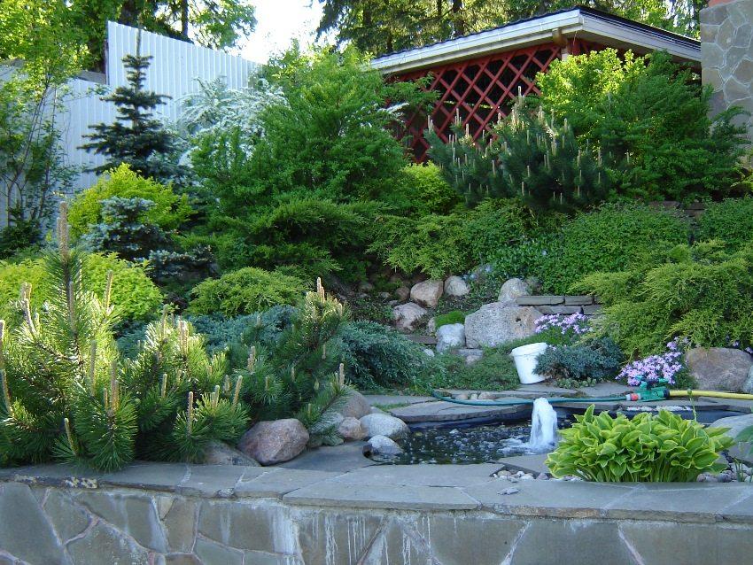 Альпийский стиль предполагает наличие на участке каменной горки и водоема