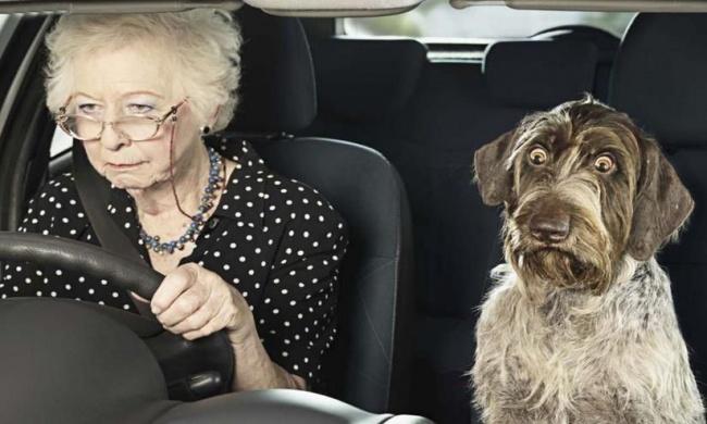 Останавливает полицейский пожилую даму за превышение скорости...а дальше - полный слом шаблона!
