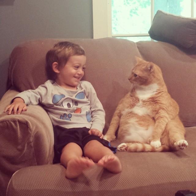 Нежеланный кот стал опекуном этого маленького мальчика, следуя за ним повсюду