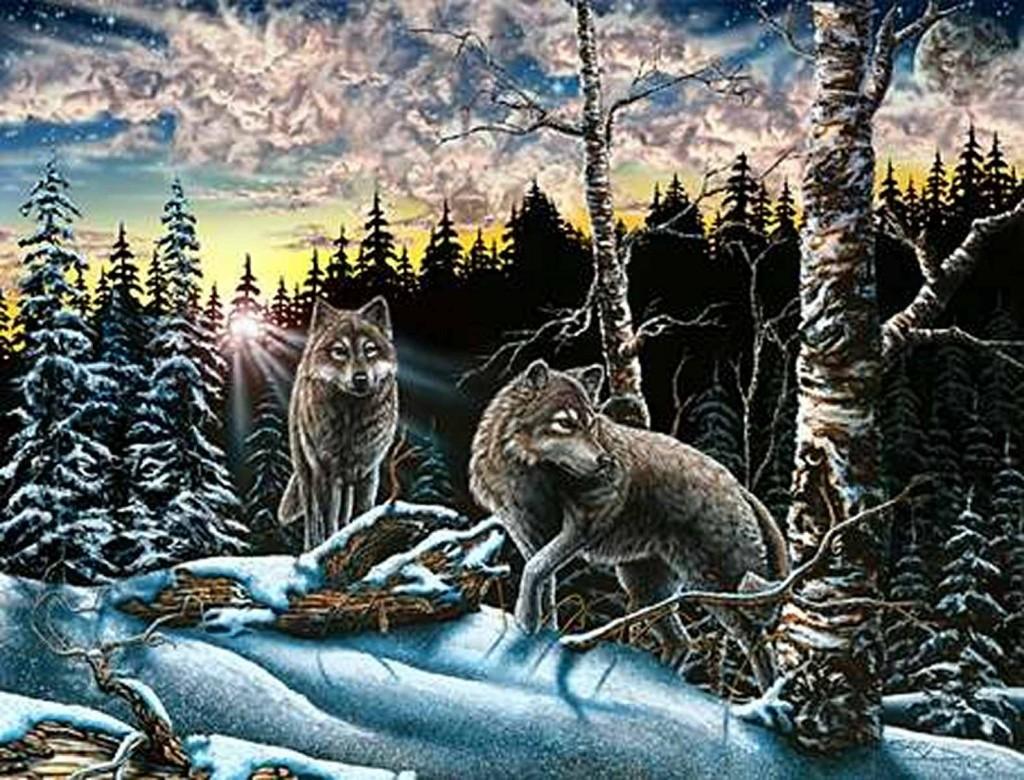 На картинке скрыто 15 волков. Попробуй найти их всех. Стивена Гарднера, загадки, картины