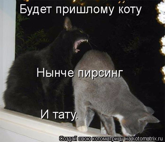 1433454515_01 (700x601, 211Kb)