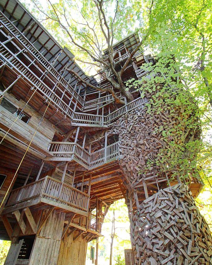 Когда решил построить дом на дереве, но увлекся