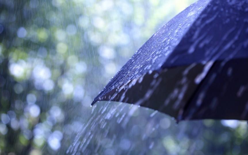 6. Японца погубил обычный зонт идиоты, премия дарвина, смерть