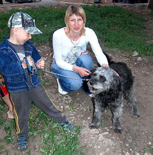 Бездомный пес спас ребенка от смерти