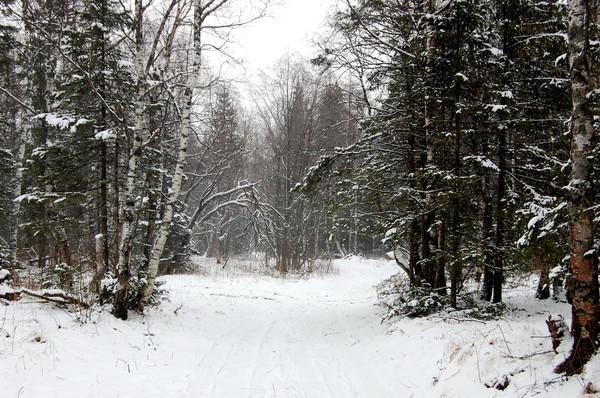 Южный Урал. Уреньга - зима в октябре.