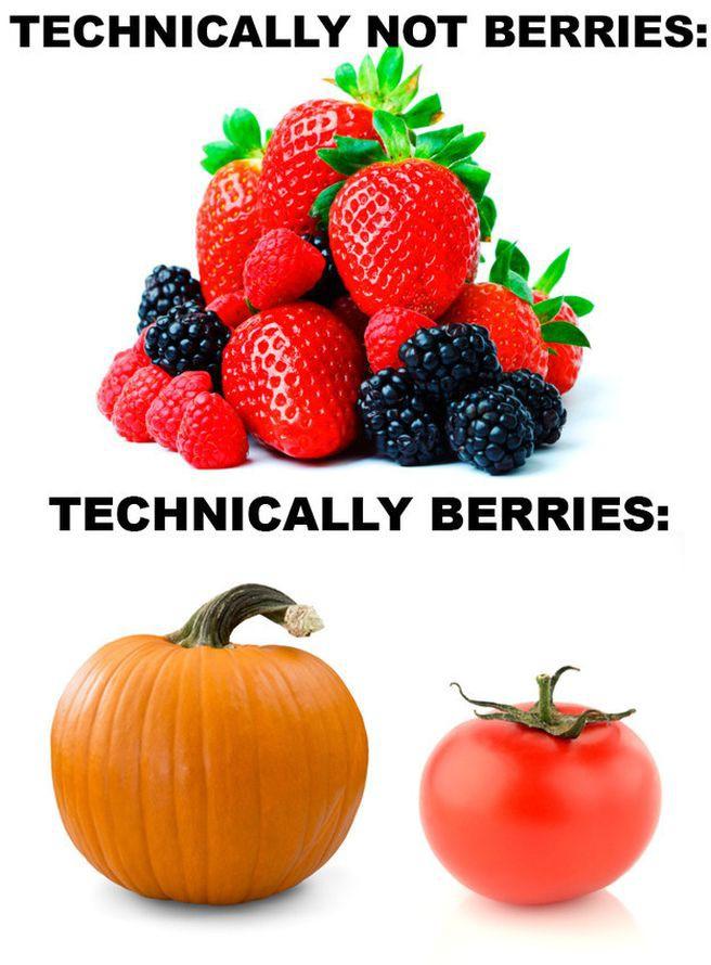 4. Некоторые фрукты — это ягоды, а некоторые ягоды — фрукты. здоровье, интересно, факты