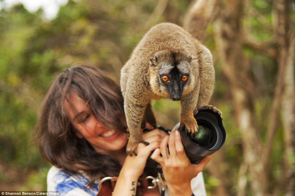 Brave girl-the photographer easily finds common language with wild animals 08