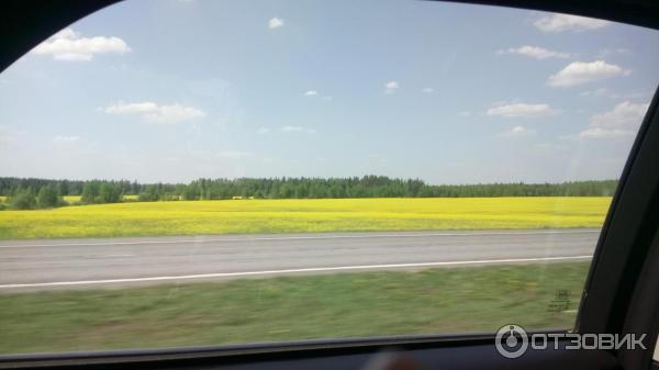 «В Беларуси мы открыли рты от увиденного». Неожиданные впечатления российских туристов