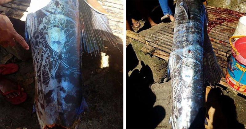 На Филиппинах выловили «татуированную» рыбу и никто не знает, откуда взялись эти рисунки
