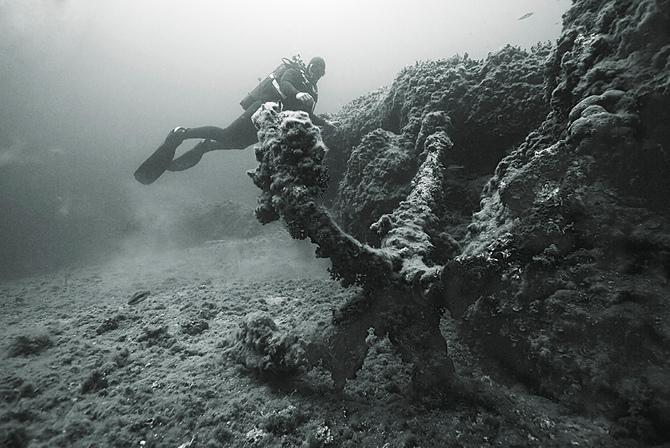 Подводный мир Сергея Баркова